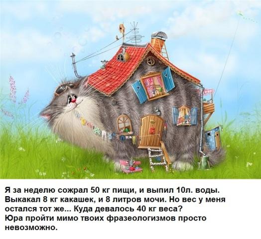 http://sg.uploads.ru/0RzY5.jpg