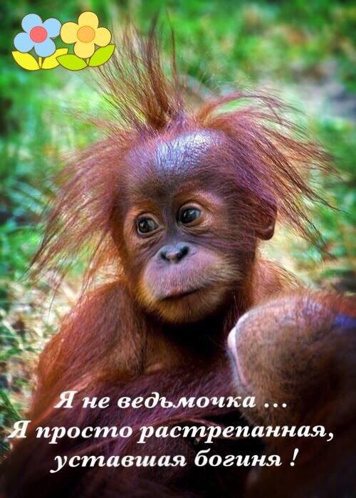 http://sg.uploads.ru/3RCtF.jpg