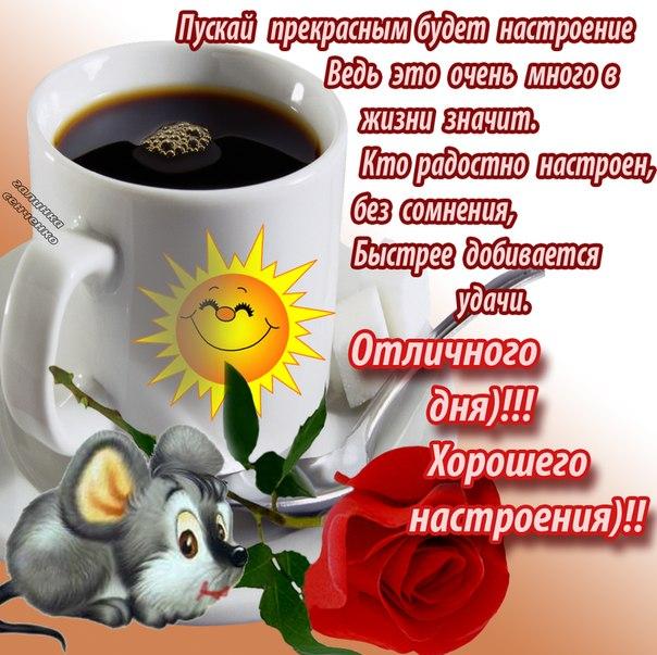 http://sg.uploads.ru/49oT1.jpg