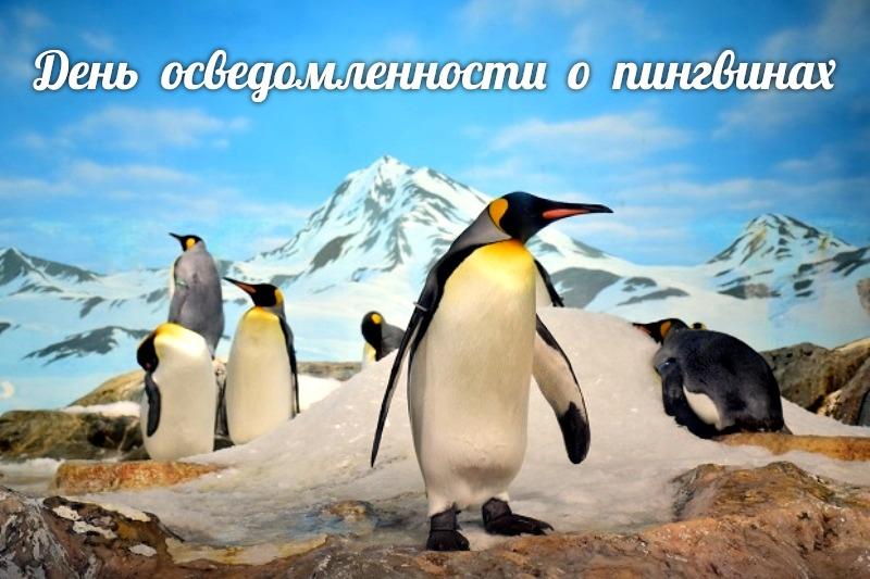 http://sg.uploads.ru/5N4bw.jpg
