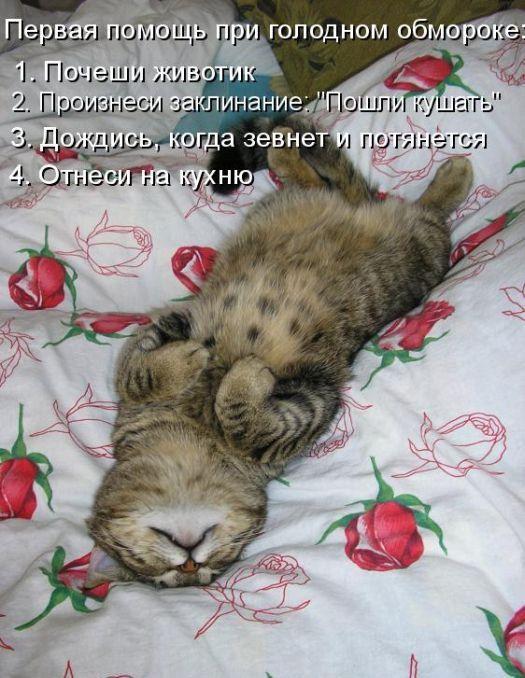 http://sg.uploads.ru/7J9PU.jpg