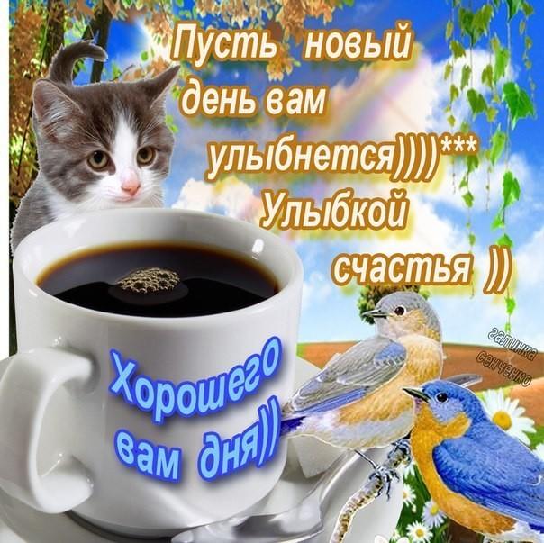 http://sg.uploads.ru/8CaMK.jpg