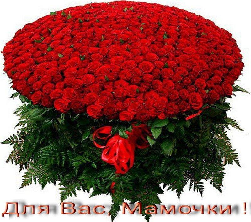 http://sg.uploads.ru/8GU9F.jpg