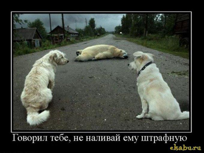 http://sg.uploads.ru/8WlZC.jpg