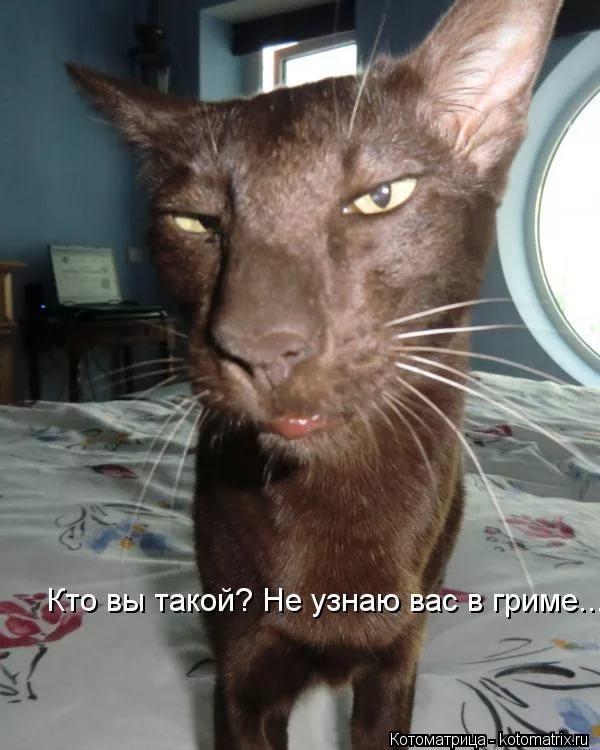 http://sg.uploads.ru/8kP9e.jpg