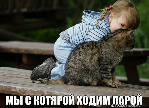 http://sg.uploads.ru/AKHJG.jpg