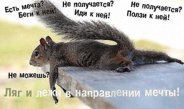 http://sg.uploads.ru/Awg94.jpg