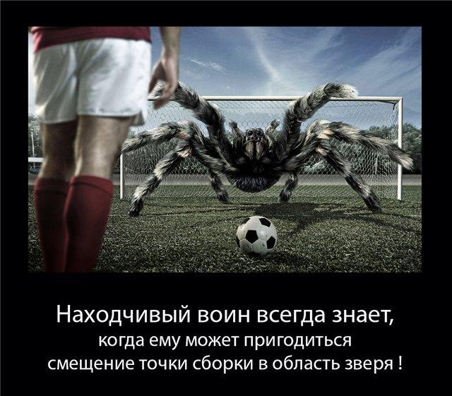 http://sg.uploads.ru/B1DGX.jpg