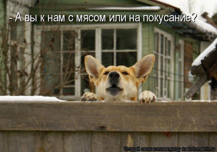 http://sg.uploads.ru/CByzw.jpg