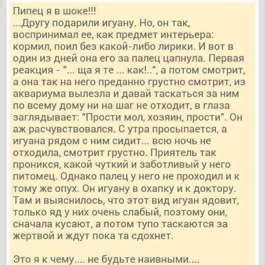 http://sg.uploads.ru/CEnFW.jpg