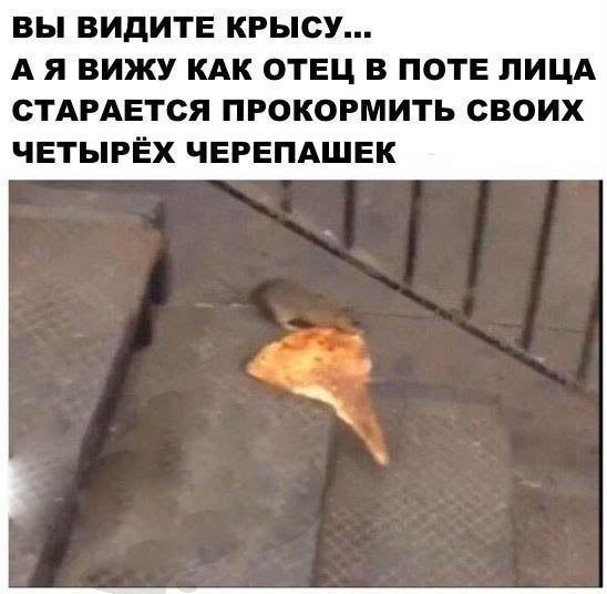 http://sg.uploads.ru/CuadZ.jpg