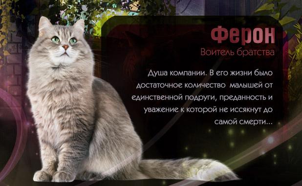 http://sg.uploads.ru/E2zgO.jpg