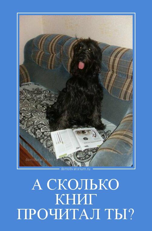 http://sg.uploads.ru/EQ9cW.jpg