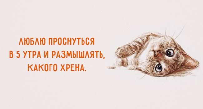 http://sg.uploads.ru/Eefuc.jpg