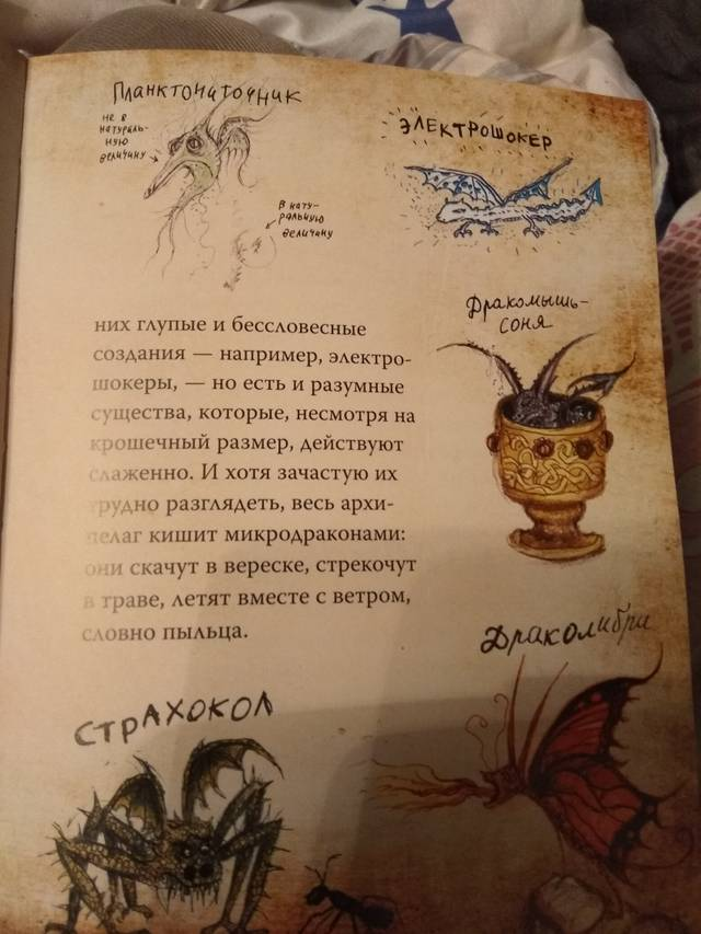 http://sg.uploads.ru/F8tQI.jpg