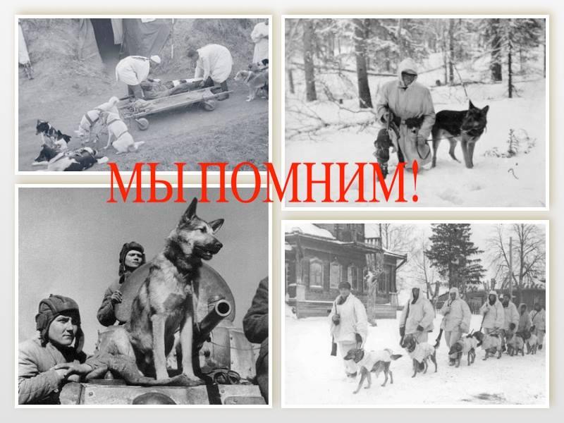 http://sg.uploads.ru/FNq5z.jpg
