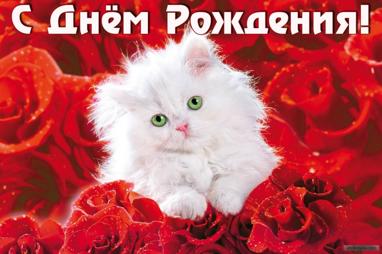 http://sg.uploads.ru/Fsqd2.jpg