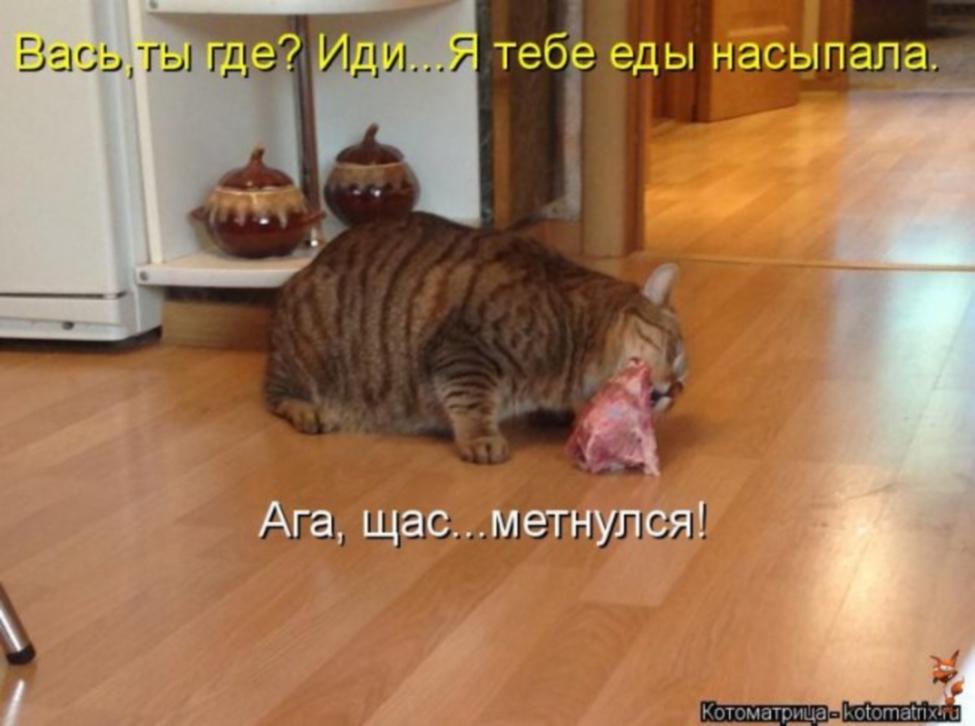 http://sg.uploads.ru/GjSFg.jpg