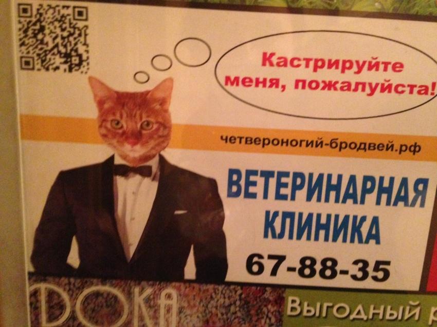 http://sg.uploads.ru/HWd0l.jpg