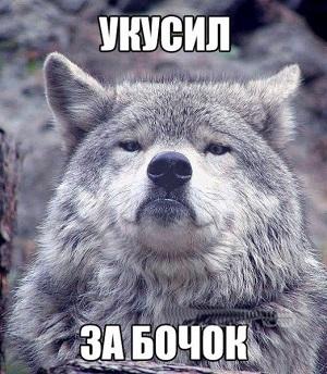 http://sg.uploads.ru/IsK6O.jpg