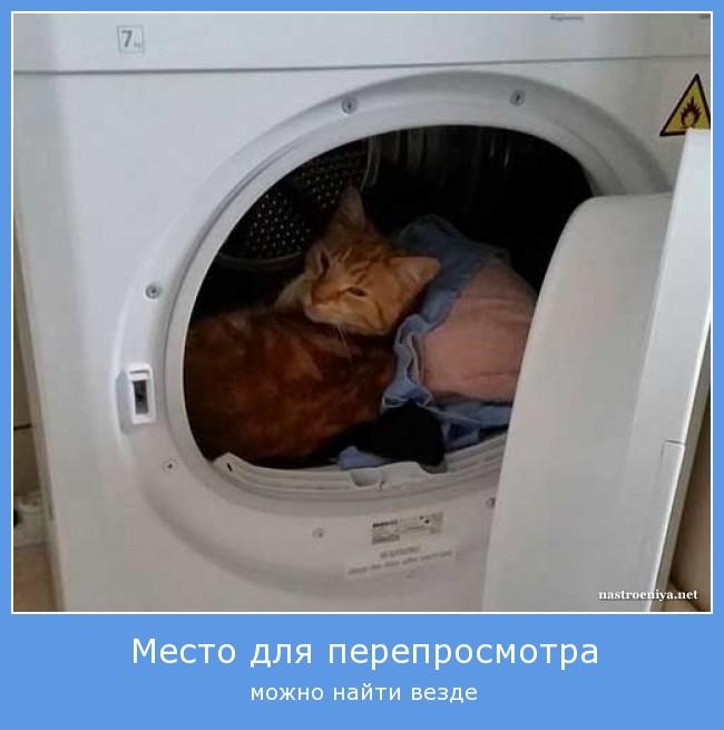 http://sg.uploads.ru/Jx9fp.jpg