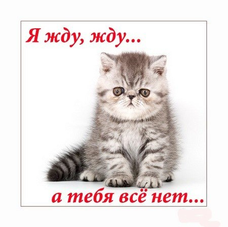 http://sg.uploads.ru/KHLQP.jpg