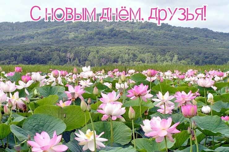 http://sg.uploads.ru/KTvSj.jpg