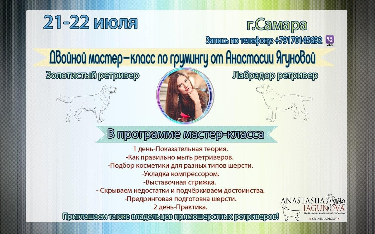http://sg.uploads.ru/KTyia.jpg