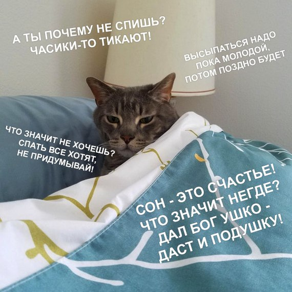 http://sg.uploads.ru/NJh9f.jpg