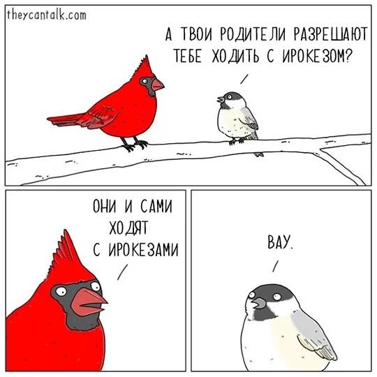 http://sg.uploads.ru/NOV8p.jpg