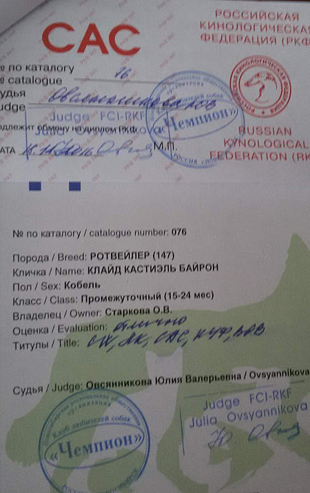 http://sg.uploads.ru/NOerT.jpg