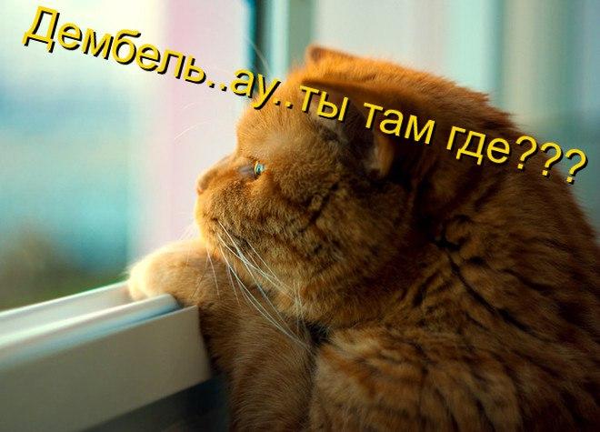 http://sg.uploads.ru/NQn6b.jpg