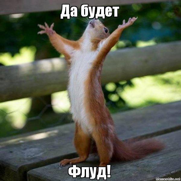 http://sg.uploads.ru/OIYR5.jpg