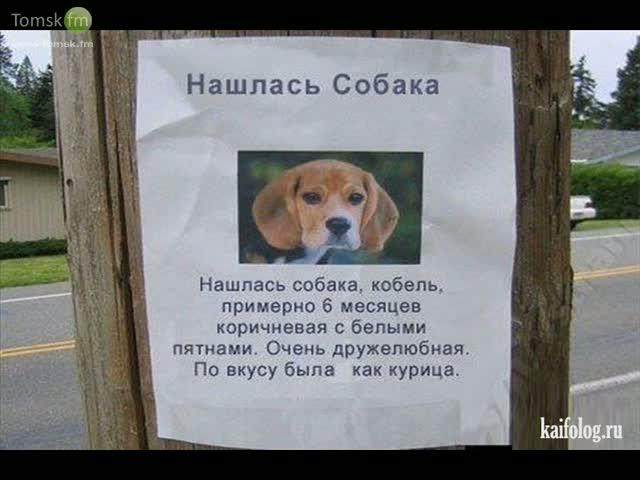 http://sg.uploads.ru/OJviA.jpg