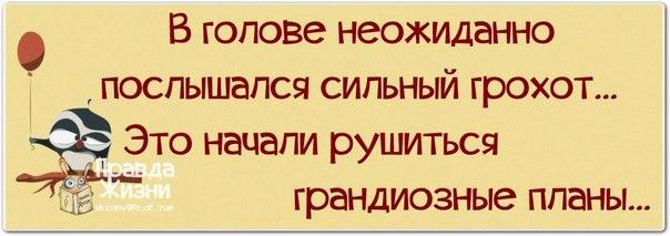 http://sg.uploads.ru/P2Eay.jpg