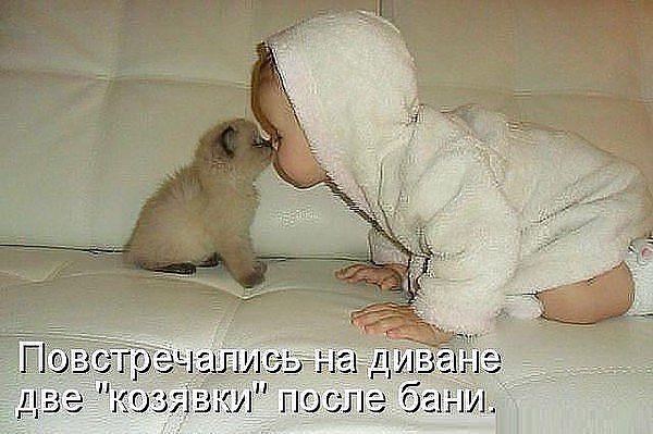 http://sg.uploads.ru/SV9JR.jpg