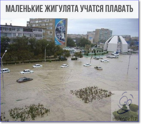 http://sg.uploads.ru/SysAg.jpg