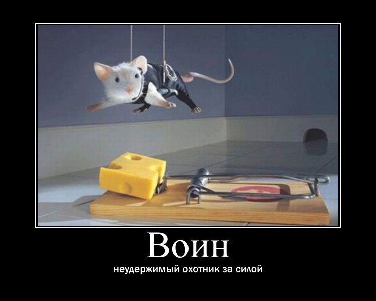 http://sg.uploads.ru/UnyRA.jpg