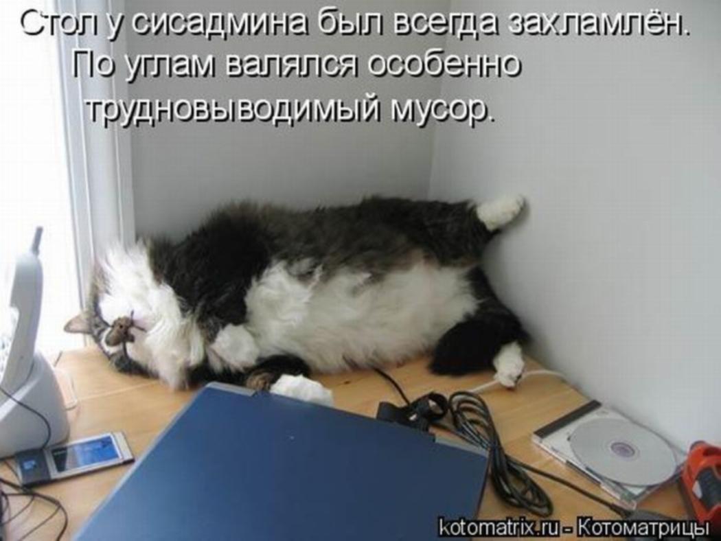 http://sg.uploads.ru/V8MSN.jpg
