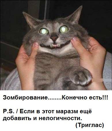http://sg.uploads.ru/VNH6A.jpg