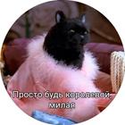 http://sg.uploads.ru/W07g5.png