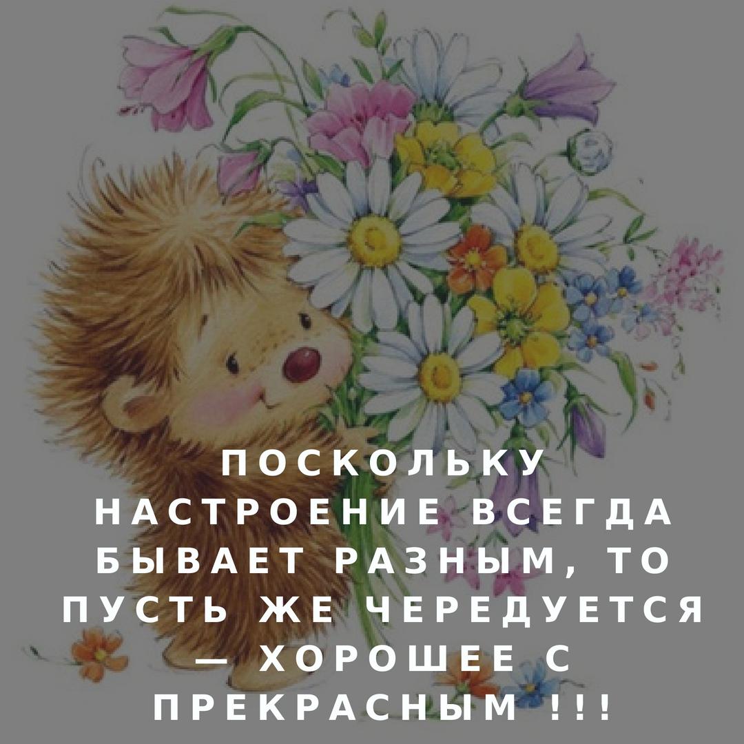 http://sg.uploads.ru/XHis2.jpg