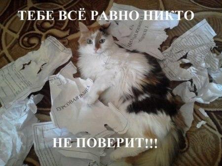http://sg.uploads.ru/YLEHU.jpg