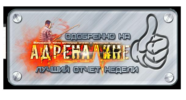 http://sg.uploads.ru/an2MN.png