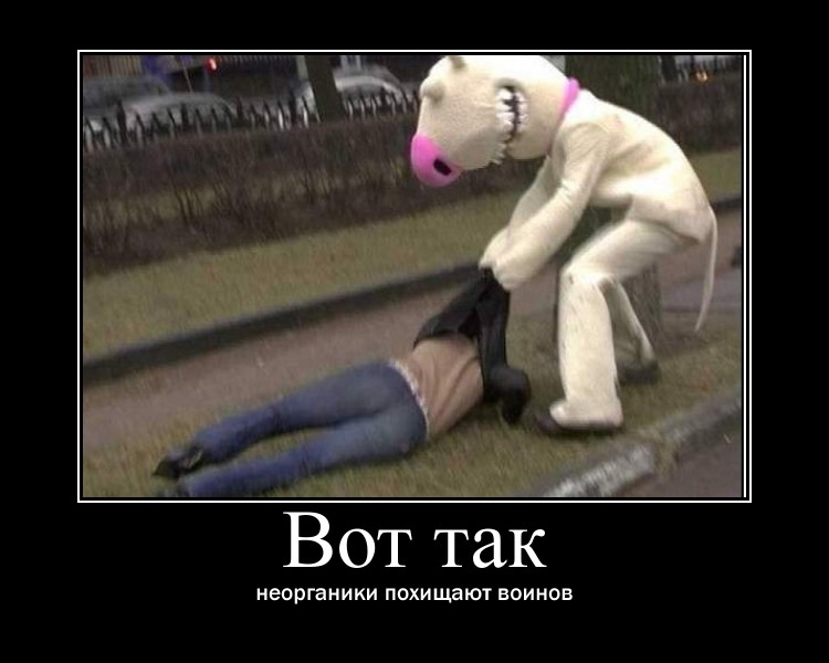 http://sg.uploads.ru/bz8mr.jpg