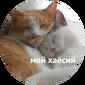 http://sg.uploads.ru/d/ASuK4.png