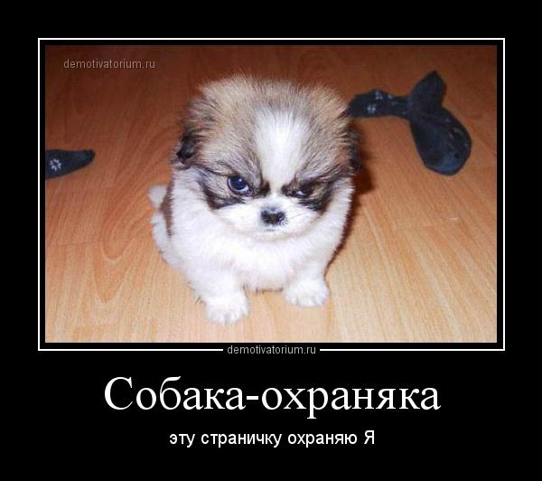 http://sg.uploads.ru/dEY0l.jpg