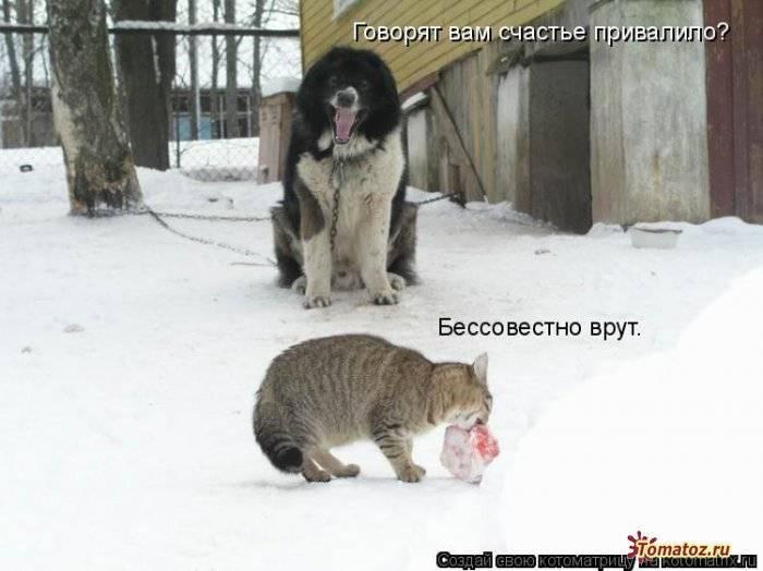 http://sg.uploads.ru/dJmxc.jpg