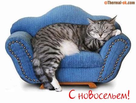 http://sg.uploads.ru/dRUfb.jpg
