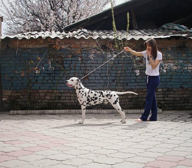 http://sg.uploads.ru/eKzVy.jpg